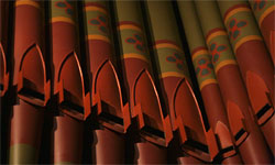organ pipes closeup